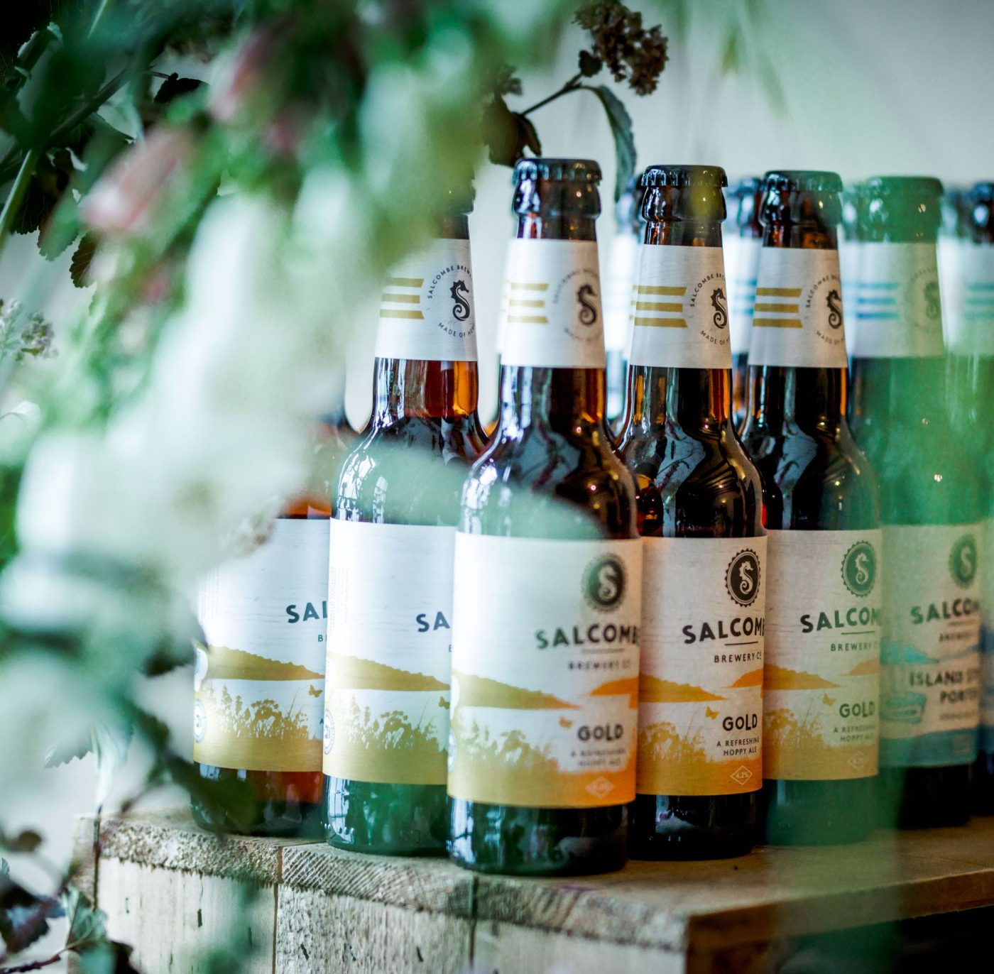 Food Drink Devon Summer Party with Salcombe Brewery